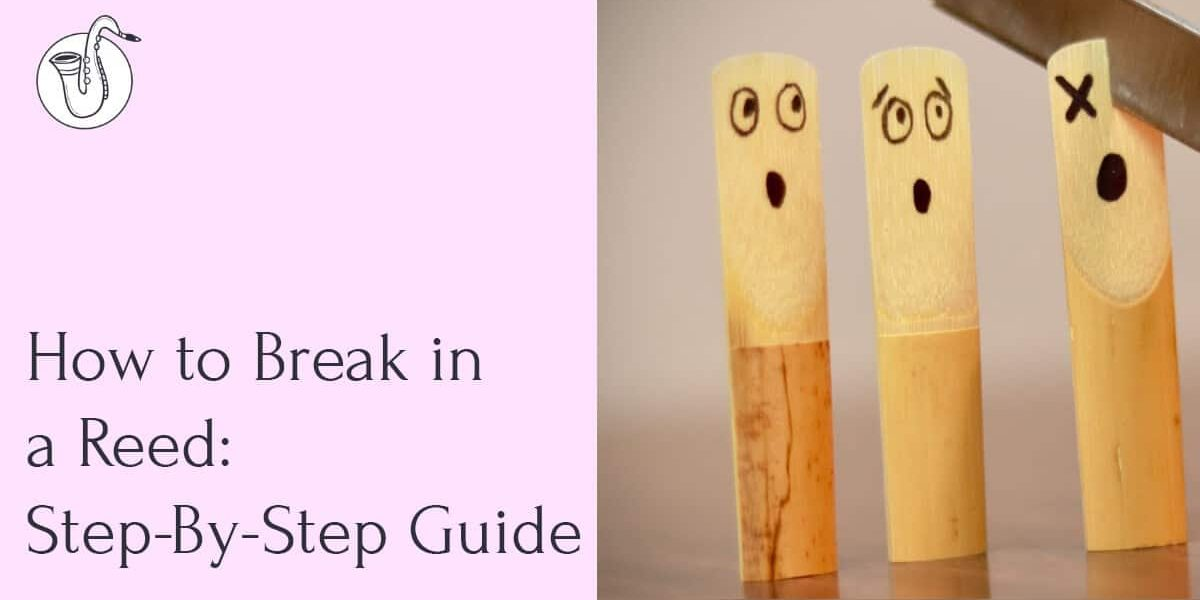 How to Break In a Reed? Steps and Tips for Breaking In a Reed